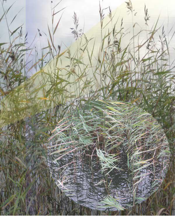Grafik av Jill Englund - Medlem i Föreningen Konstgrafiker i Jönköping